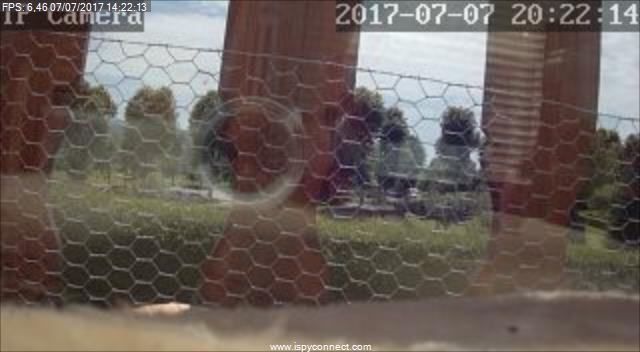 webcam Orgelet